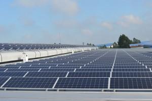 Thí nghiệm cọc -  Gói thầu Cung cấp, thi công và thí nghiệm kéo và đẩy ngang cọc cho dự án điện mặt trời Sao Mai 104MW.